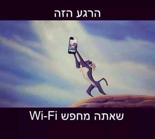 לחפש wifi