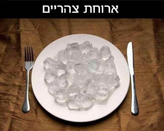 ארוחת צהריים