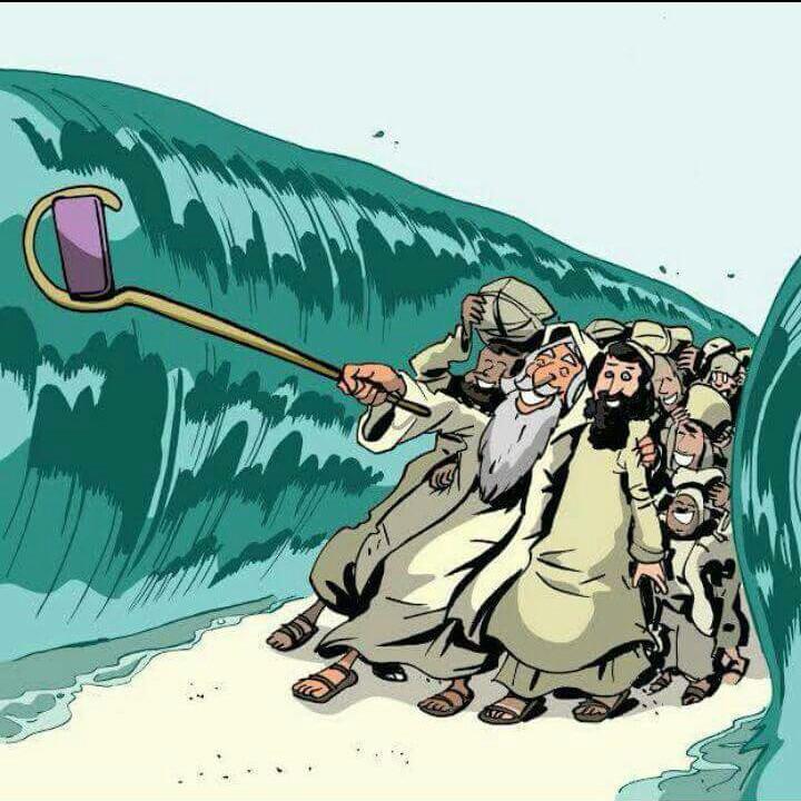 סלפי חציית ים סוף
